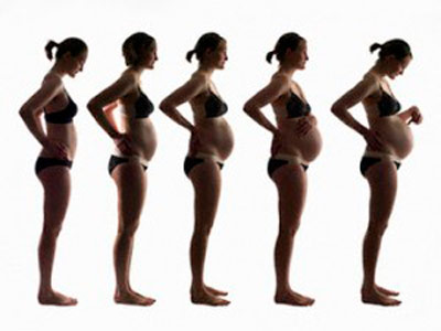 триместры беременности по неделям